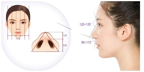 Tạo hình mũi nhanh chóng, thấy được kết quả trước khi thực hiện