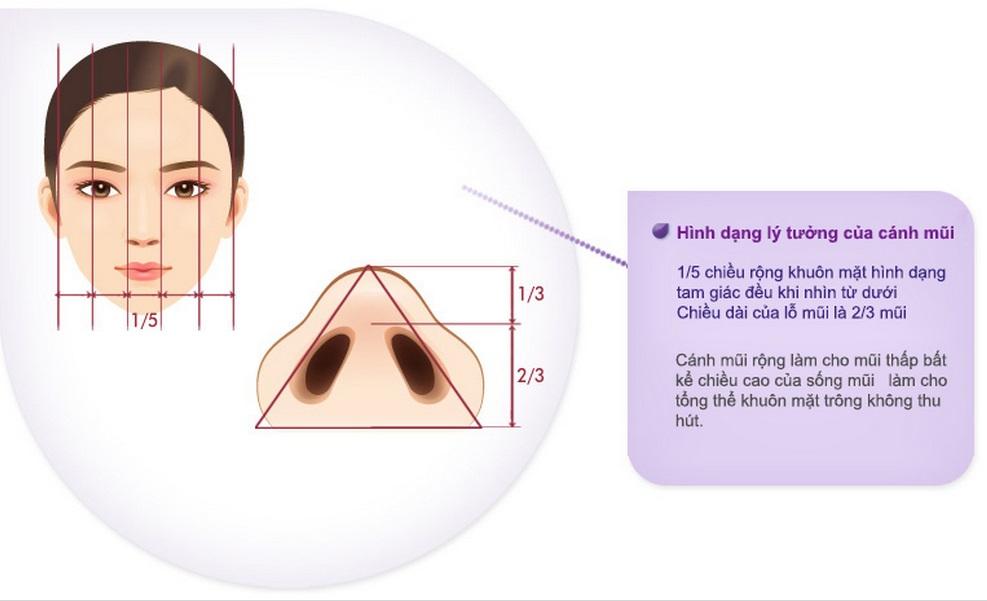 Đầy đủ nhất về phẫu thuật thu gọn cánh mũi đẹp 2